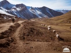 ivan-digital-ausangate-fotografia-viajes-naturaleza-aventura-20